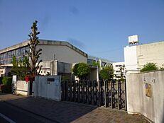 小学校立川市立 幸小学校まで770m