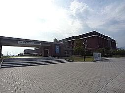 エイジングコート三宮[4階]の外観