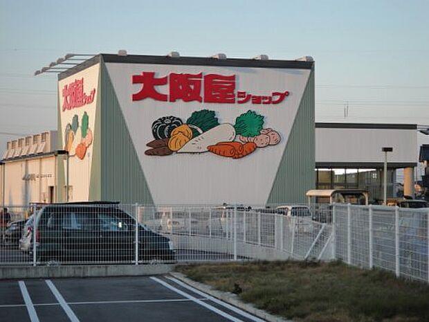 【スーパー】大阪屋ショップ 藤木店まで735m
