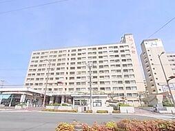 松ノ木町団地1号棟[813号室]の外観
