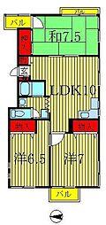 メゾンコティー[2階]の間取り