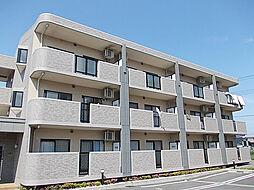 サニーカーサA[2階]の外観