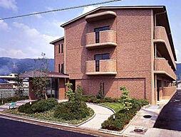 大阪府八尾市曙川東6丁目の賃貸マンションの外観