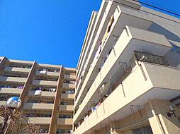 川口寿コーポ[3階]の外観