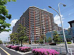 10階角部屋 専有面積133平米 レジアスフォート新浦安