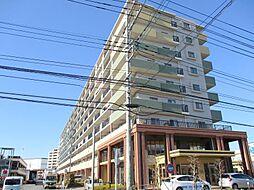 サンクレイドル橋本 角部屋 ビックコミュニティ