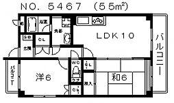 マジョール松崎町[201号室号室]の間取り