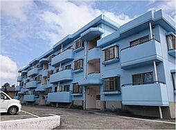 神奈川県藤沢市善行坂1丁目の賃貸マンションの外観