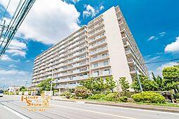 草加スカイハイツ 8階
