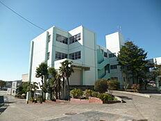 日立市立河原子小学校(719m)