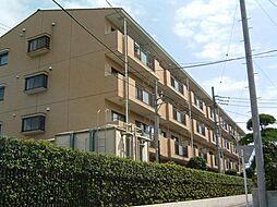 シティハイム信栄[1階]の外観