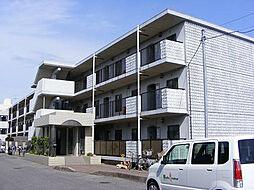 千葉県柏市西原4丁目の賃貸マンションの外観