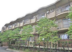 山梨県甲府市小松町の賃貸マンションの外観