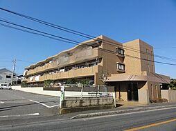 グレースアベニュー桜木[201号室]の外観