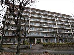 読売ランド前ハイデンスA棟605号室