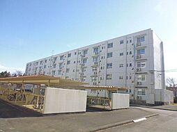 静岡県御殿場市中畑の賃貸マンションの外観