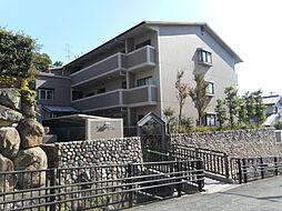 メルベーユ朝日ヶ丘[0301号室]の外観