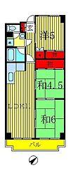 千葉県松戸市常盤平1丁目の賃貸マンションの間取り