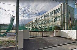 黄金中学校…約800m