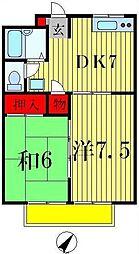 千葉県松戸市五香1丁目の賃貸マンションの間取り