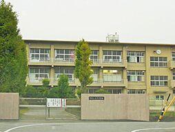 岡崎市立岩津中学校約1143m