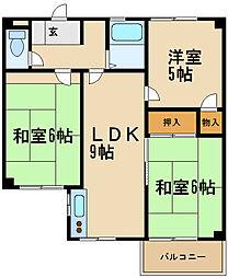 兵庫県伊丹市堀池2丁目の賃貸マンションの間取り