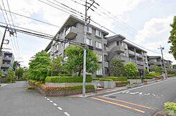 コープ野村緑山ヒルズ弐番館216
