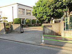 共成小学校 710m