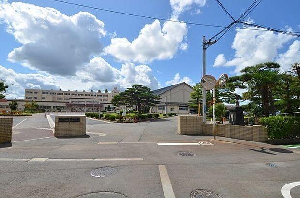 新潟市立新津第一小学校 徒歩 約11分(約870m)