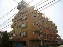 神奈川県平塚市中堂の賃貸マンションの外観