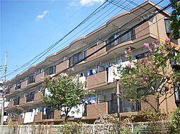 千葉県船橋市芝山5丁目の賃貸マンションの外観