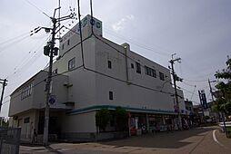 [一戸建] 兵庫県宝塚市平井2丁目 の賃貸【/】の外観