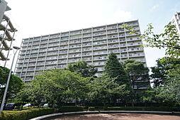 志木ニュータウン中央の森弐番街 7号棟