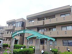 松戸ハイツ[1階]の外観
