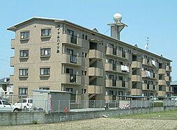 福岡県春日市下白水北3丁目の賃貸マンションの外観