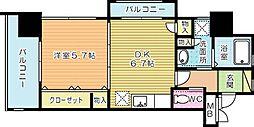 Felt1113(フェルト1113)[206号室]の間取り