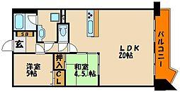 プリオーレ25大蔵海岸[5階]の間取り