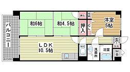 兵庫県神戸市灘区薬師通3丁目の賃貸マンションの間取り