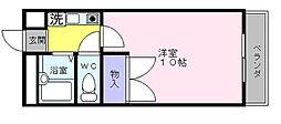 大阪府和泉市上町の賃貸マンションの間取り