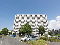 大阪府堺市南区桃山台2丁の賃貸マンションの外観