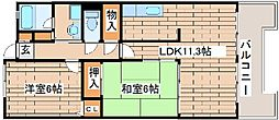 コンフォート西神戸[5020号室]の間取り