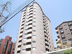 21コートマルナカ[4階]の外観