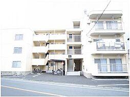 新井ハイツ[1階]の外観