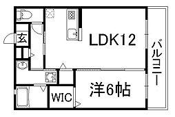 コンスル[3階]の間取り