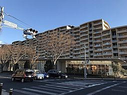 成田市加良部1丁目 アルファグランデ弐番街 10階