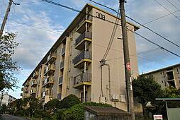 男山第4住宅308棟[5階]の外観