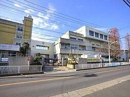 埼玉県川口市戸塚東2丁目の土地 ...