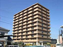 マリベール中須賀[3階]の外観