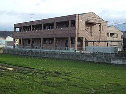 ミューズガーデンII[1階]の外観