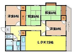 滋賀県大津市南郷2丁目の賃貸マンションの間取り